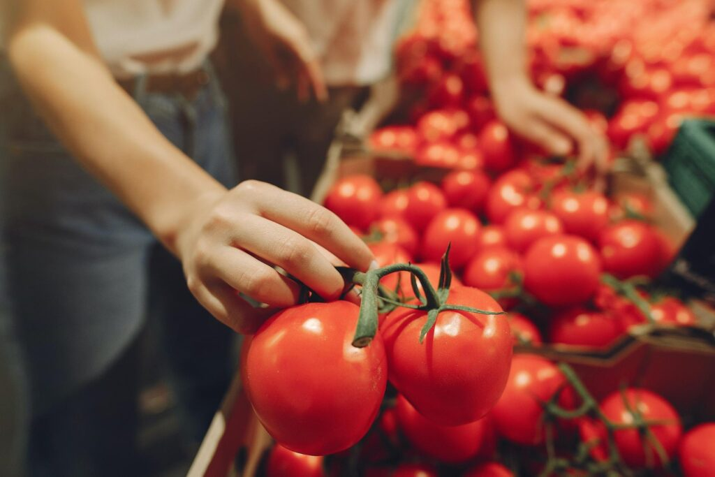 importancia da alimentacaoo saudavel