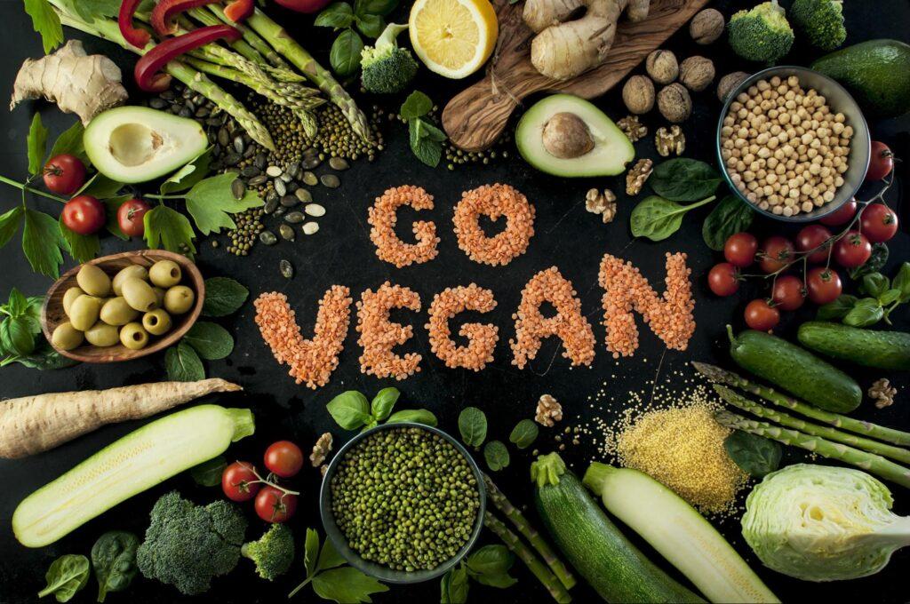 produtos veganos conclusao
