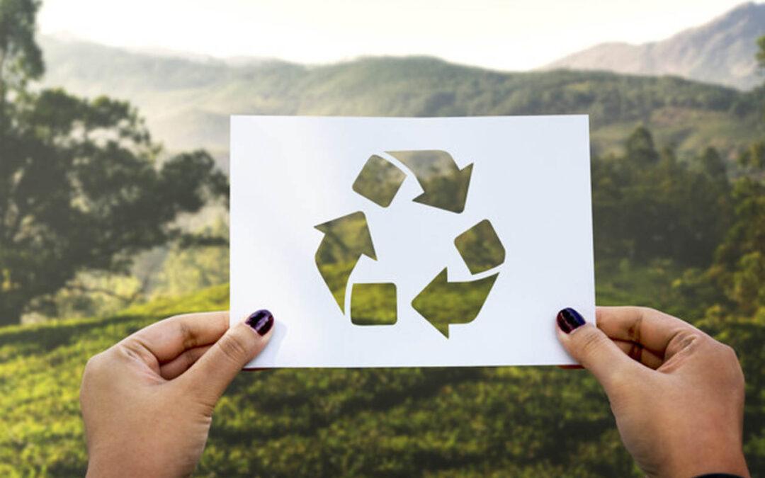 Separação de Lixo: Tudo O Que Você Precisa Saber para Fazer