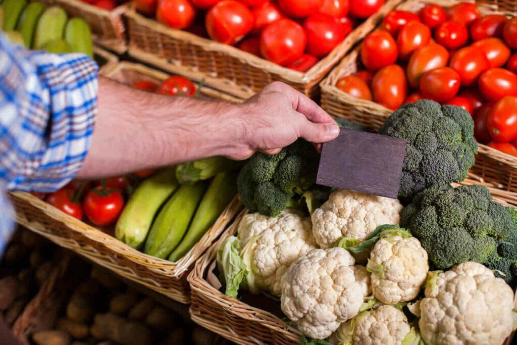 industria de alimentos no brasil produtos vegetarianos e veganos